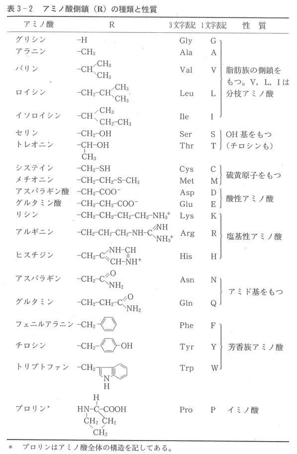 アミノ酸2.jpg