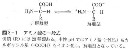アミノ酸0.jpg